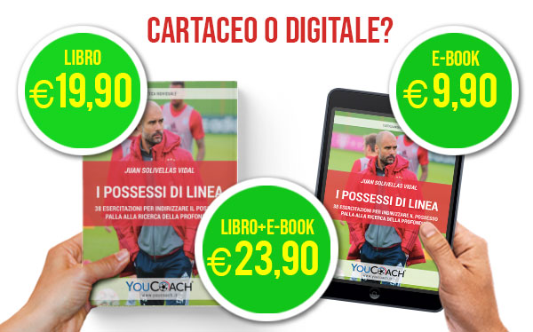 I possessi di linea libro e-book